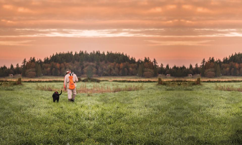 hunting-bg